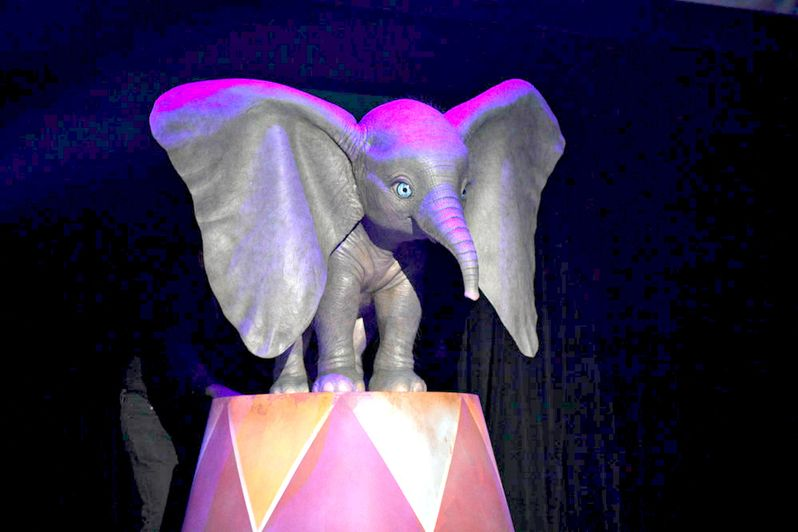 <strong><em>Dumbo</em></strong> the elephant first look photo