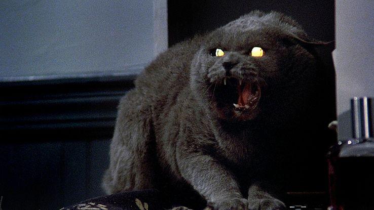 18 Filmes de Terror Mais Assustadores dos anos 1980 9