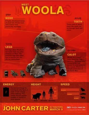 Woola Infographic