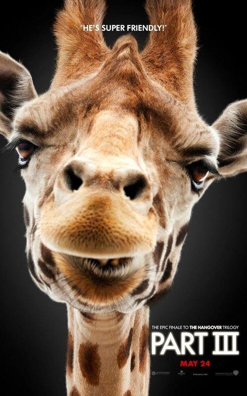 <strong><em>The Hangover Part III</em></strong> Giraffe poster