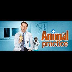 <strong><em>Animal Practice</em></strong>
