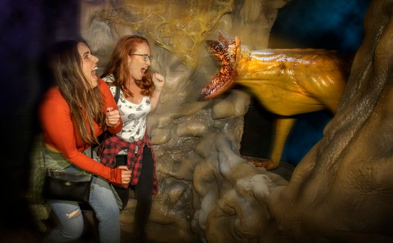 <strong><em>Stranger Things</em></strong> Halloween Horror Nights Maze #6