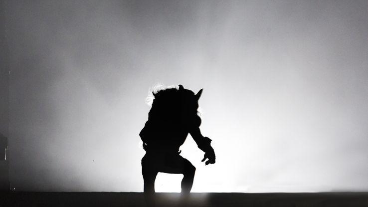 Beast Within Star: Codiretor fala sobre a esperança de um thriller de lobisomem 2
