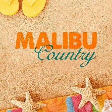 <strong><em>Malibu Country</em></strong>