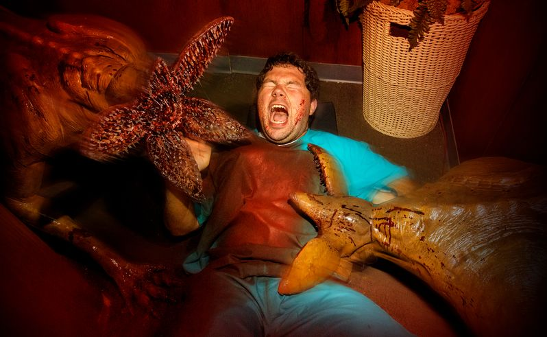 <strong><em>Stranger Things</em></strong> Halloween Horror Nights Maze #5