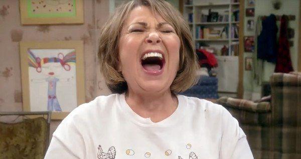 <strong><em>Roseanne</em></strong> Barr Stand-Up Comedian