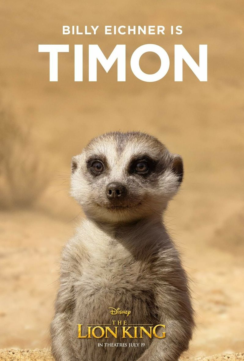 <strong><em>The Lion King</em></strong> Poster Timon