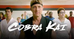 New Cobra Kai Trailer Takes Sensei Johnny Beyond Karate Kid