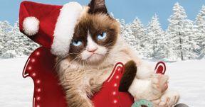 Grumpy Cat's Worst Christmas Ever Trailer Starring Aubrey Plaza