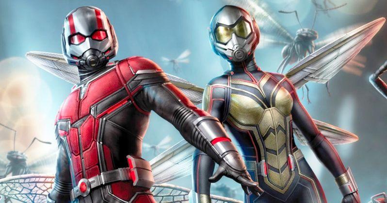Ant Man Retina Movie Wallpaper: Paul Rudd Doesn't Think Ant-Man 3 Will Happen