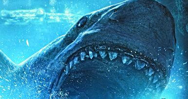 Swim with The Meg in Terrifying VR Experience