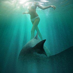 Ghost Shark Trailer!