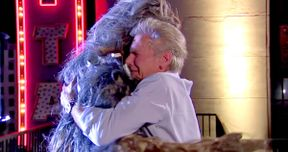 Watch Harrison Ford & Chewbacca End Their Feud on Jimmy Kimmel Live