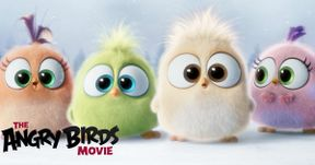 Meet the Hatchlings in The Angry Birds Movie
