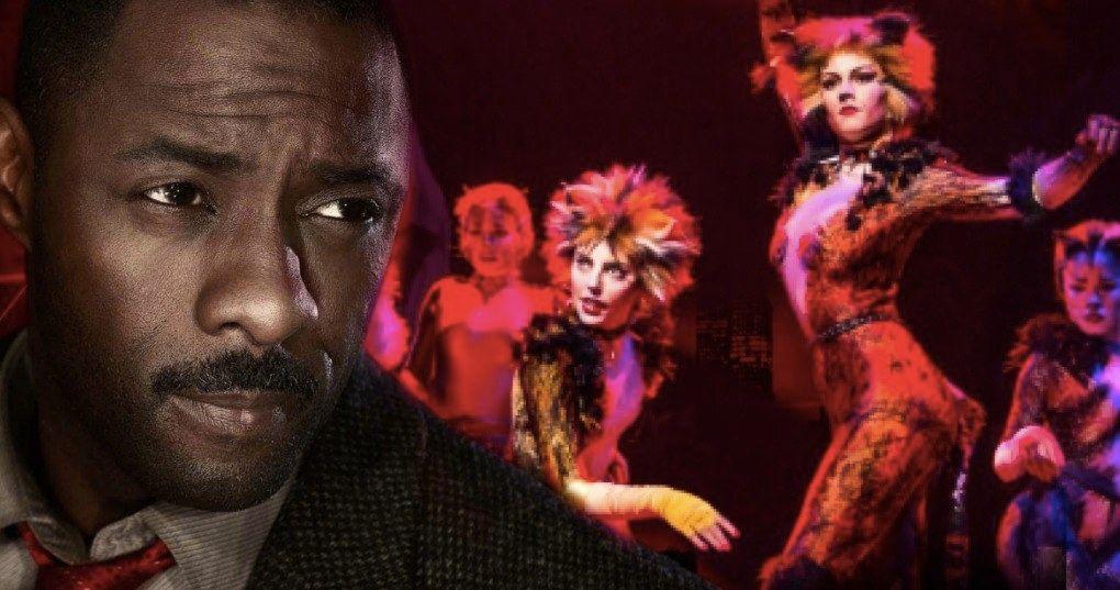 cats movie gets idris elba as the feline villain macavity