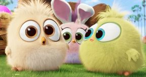 The Hatchlings Love Their Mom in Angry Birds Movie Preview