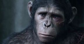 Caesar Speaks in Dawn of the Planet of the Apes Extended TV Spot