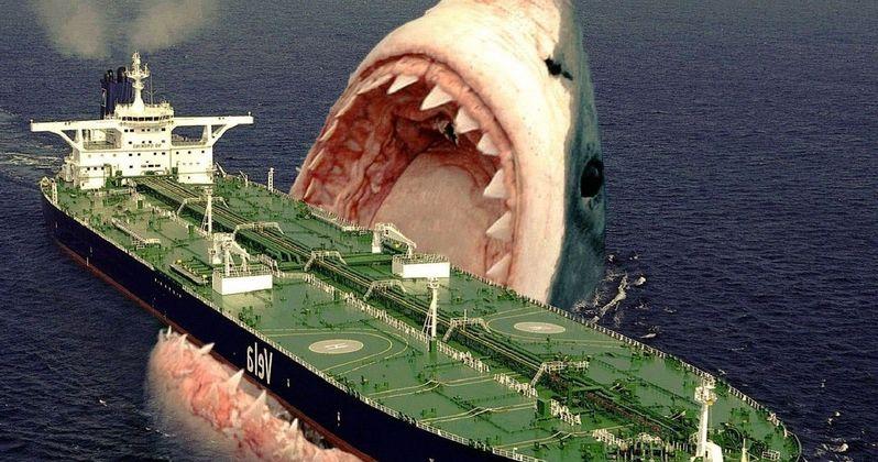 Meg Author Promises a Very Scary, Expensive Shark Movie