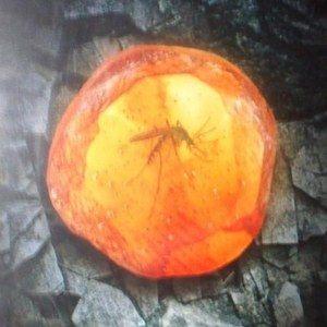 Jurassic Park IV Teaser Poster Revealed?
