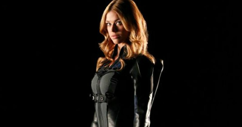 Agents of S.H.I.E.L.D. Unveils Palicki in Mockingbird Costume