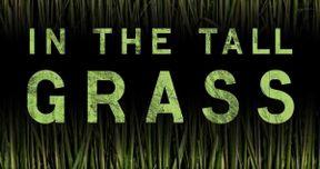 Stephen King & Joe Hill's In the Tall Grass Heads to Netflix