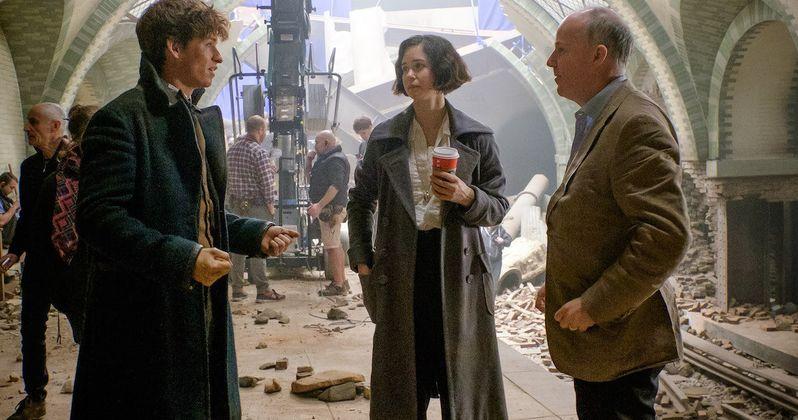 David Yates Will Direct All 5 Fantastic Beasts Movies