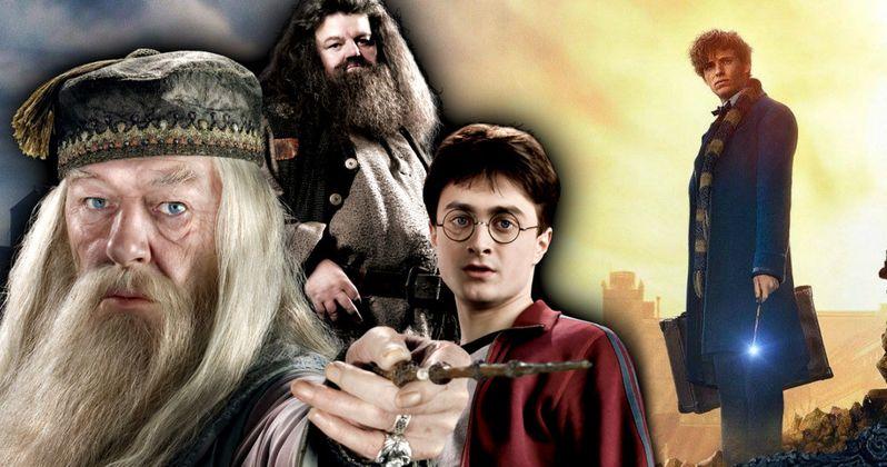 Fantastic Beasts 5 Timeline Reveals Huge Harry Potter Connection