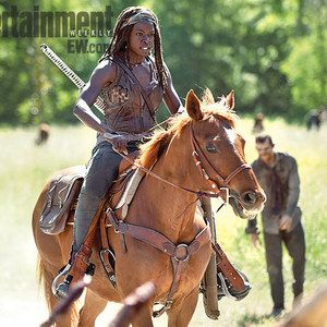 The Walking Dead Season 4 Photo Introduces Michonne's Horse Flame