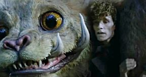 Newt's New Menagerie of Creatures Go Uncaged in Fantastic Beasts 2 Preview