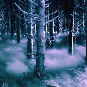 American Horror Story: Asylum 'The Woods' Trailer