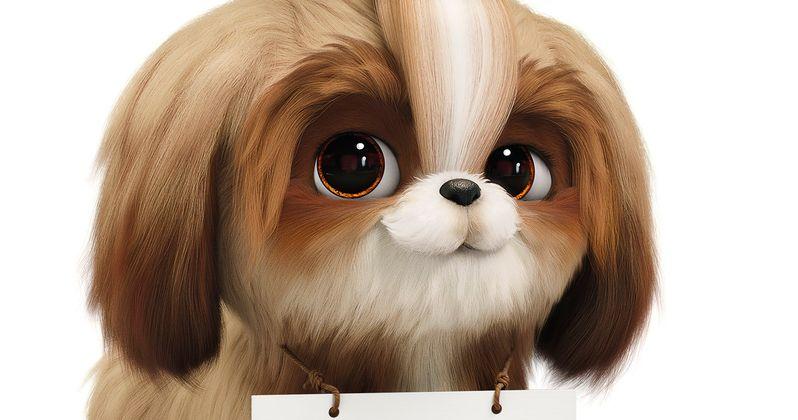 New Secret Life of Pets 2 Trailer Introduces Tiffany Haddish as Daisy