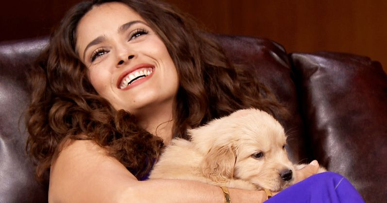 Salma Hayek's Dog Shot and Killed by Unknown Assailant