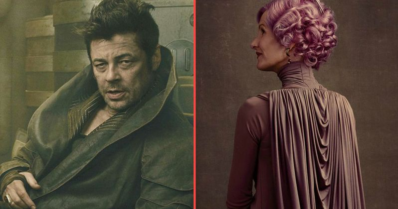 Benicio Del Toro and Laura Dern's Star Wars 8 Characters Revealed