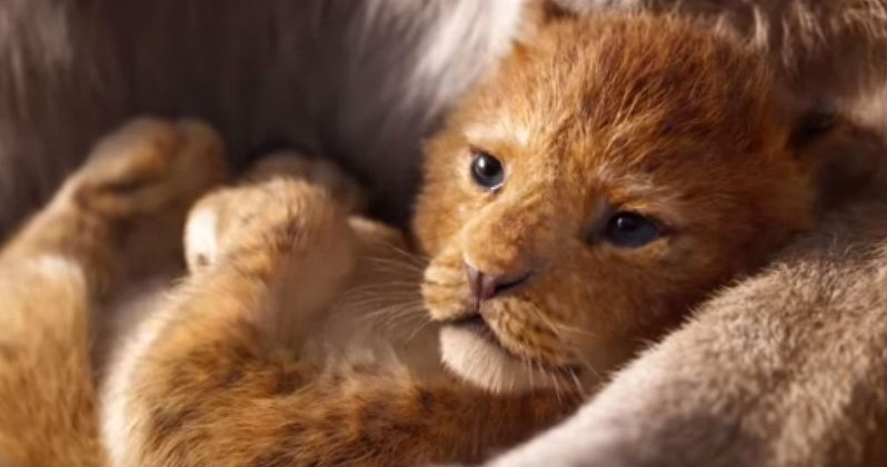 New Lion King Footage Stuns CinemaCon Crowd with the Circle of Life