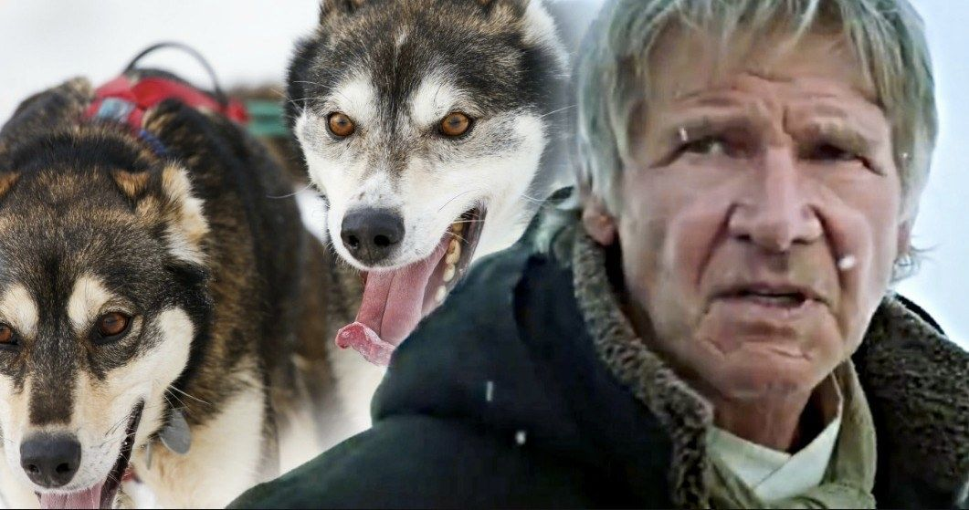 Harrison Ford Takes on Call of the Wild Remake