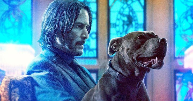 ผลการค้นหารูปภาพสำหรับ john wick and dog