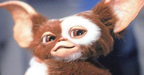 Gremlins 3 Will Be a Full Reboot Says Director Chris Columbus