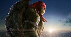 Teenage Mutant Ninja Turtles Raphael Character Poster