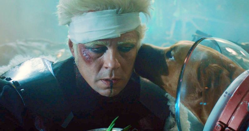 Benicio Del Toro Thinks the Collector Survived Infinity War