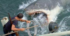 Richard Dreyfuss Really Wants a Jaws Rerelease with a CGI Shark