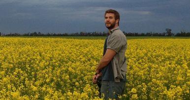 Cut Bank Starring Liam Hemsworth Lands at A24