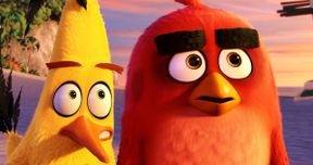 Angry Birds Movie Will Finally Answer This Important Question