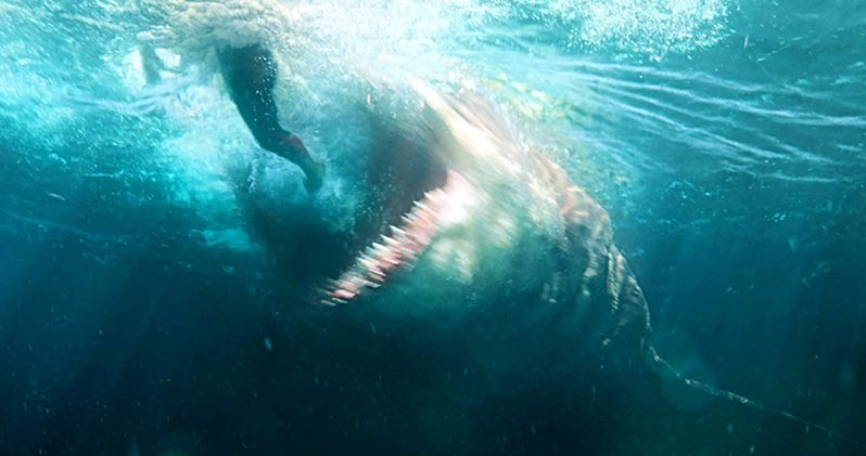 The Meg Sinks Its Teeth Into $44.5M at the Box Office