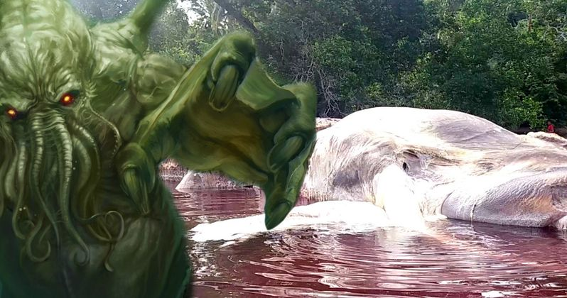 Real-Life Sea Monster Washes Ashore in Indonesia, Is It an Alien?