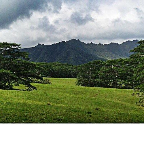 Jurassic Park IV 'Return to Isla Nublar' Set Photo