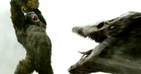 Kong Fights a Skull Crawler in Bone-Crunching Skull Island Clip