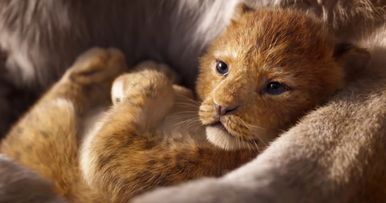 The Lion King Remake Ignites Big Debate: Is It Animation or Live-Action?