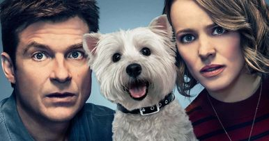 Meet Olivia, the Scene-Stealing Dog from Widows & Game Night