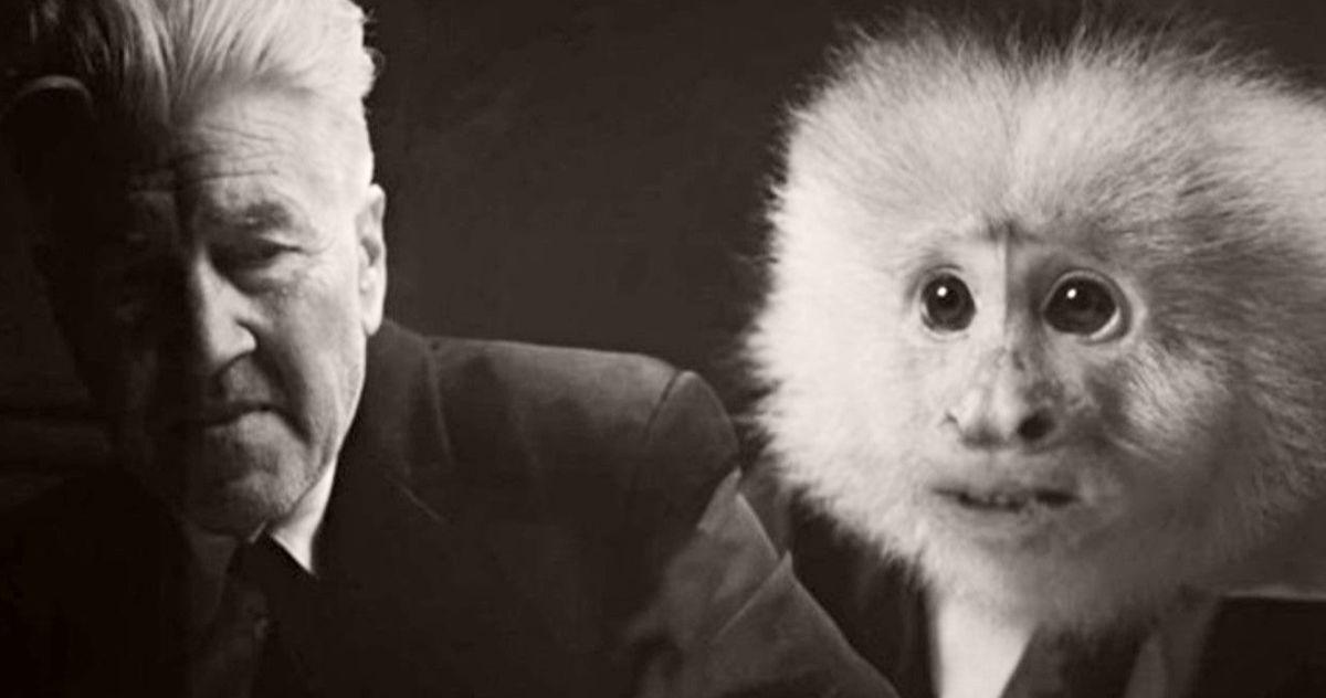 David Lynch Interrogates a Monkey Murder Suspect in His Surprise Netflix Short
