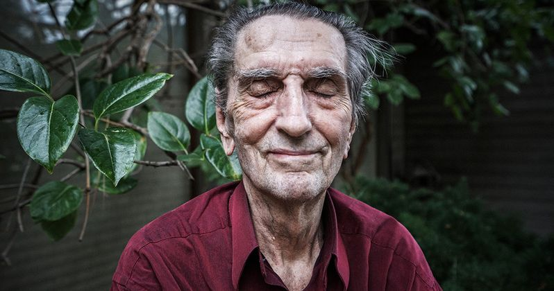 Harry Dean Stanton Remembered as Hollywood Mourns Cult Favorite